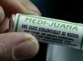 A Verdadeira História da Marijuana